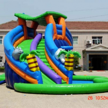 Water slides with pool